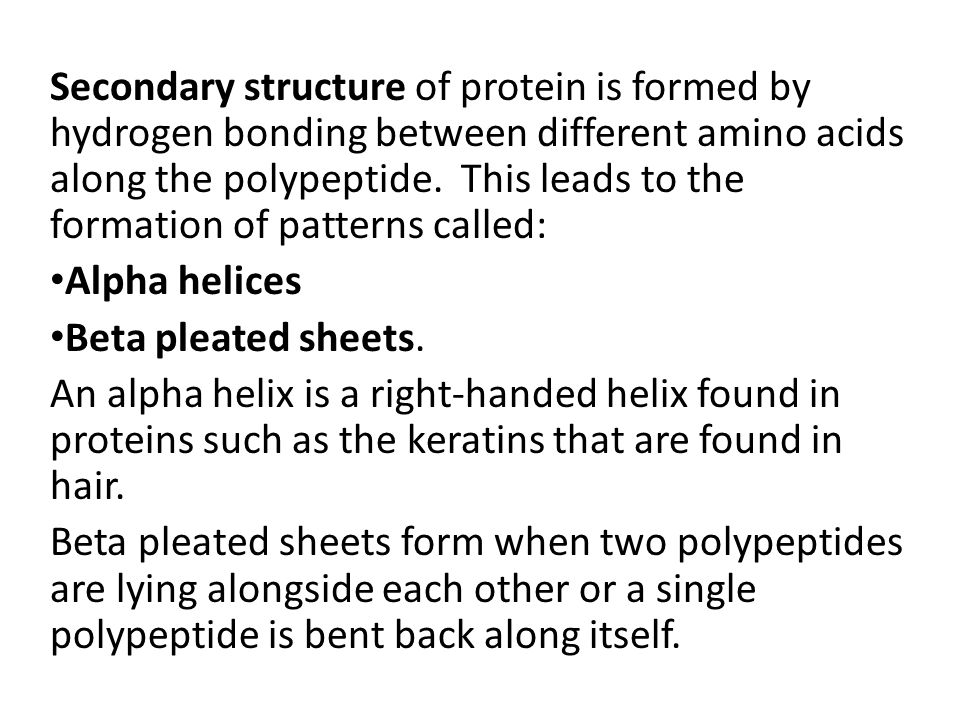 Secondary structure of protein is formed by hydrogen bonding between different amino acids along the polypeptide.