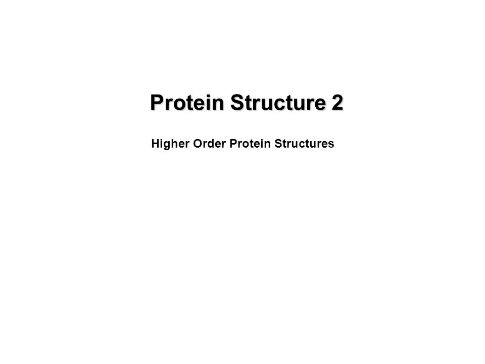 Protein Structure 2 Higher Order Protein Structures