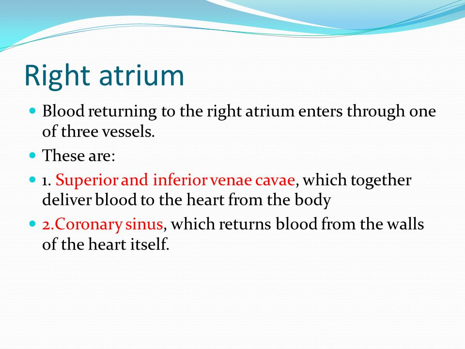 Right atrium Blood returning to the right atrium enters through one of three vessels.