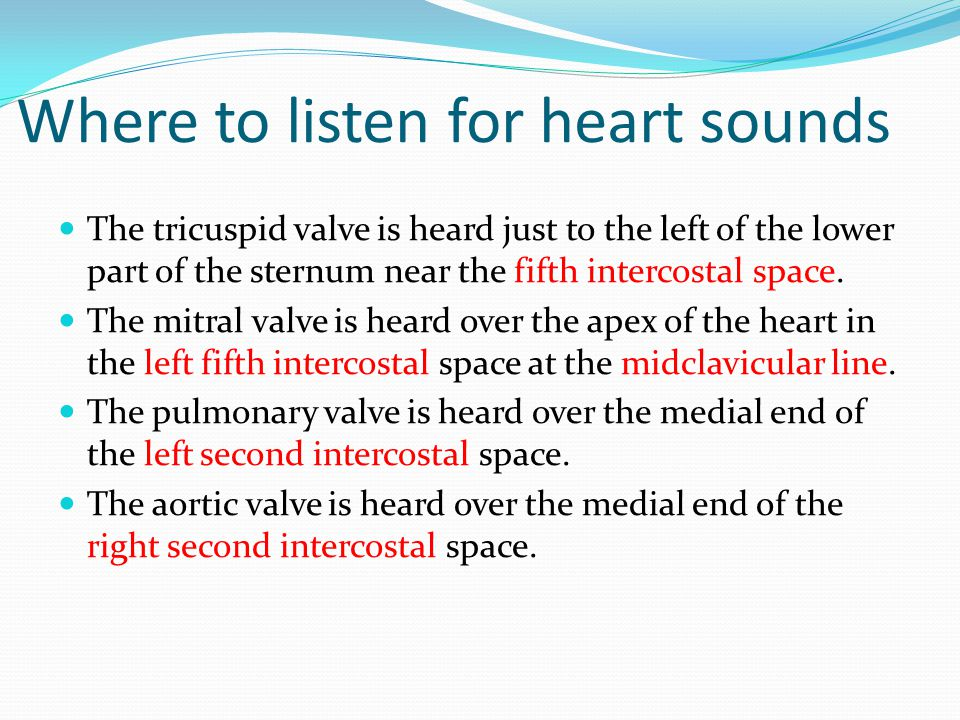 Where to listen for heart sounds The tricuspid valve is heard just to the left of the lower part of the sternum near the fifth intercostal space. The