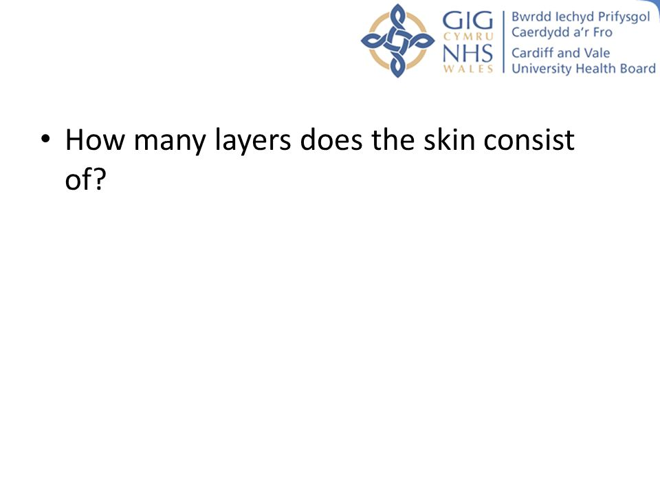 How many layers does the skin consist of?