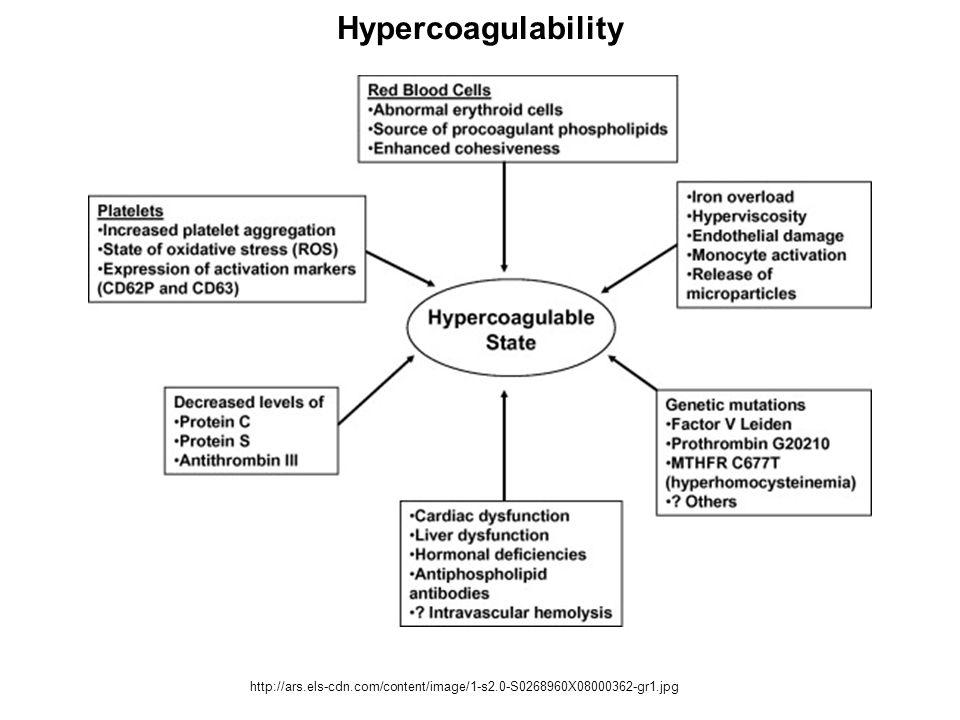 Hypercoagulability http://ars.els-cdn.com/content/image/1-s2.0-S0268960X08000362-gr1.jpg