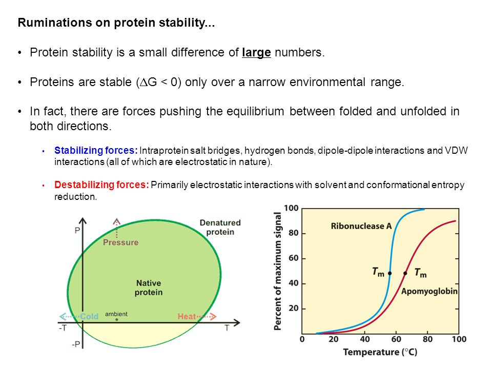 Ruminations on protein stability... Protein stability is a small difference of large numbers.