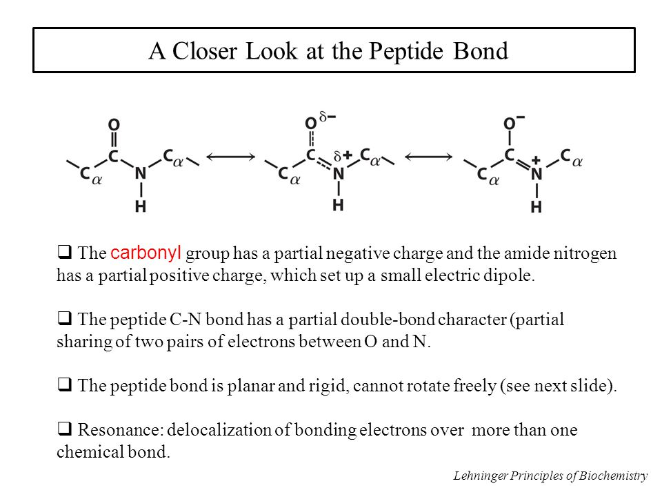 Secondary structure = local regions of proteins characterized by (i.) similar  values and (ii.) backbone hydrogen bonding