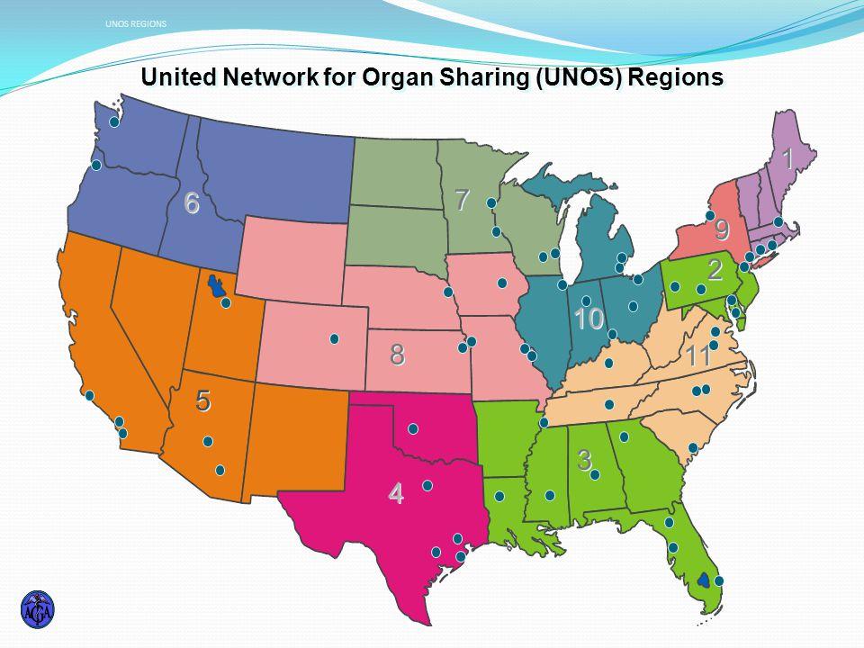 United Network for Organ Sharing (UNOS) Regions 2 2 9 9 1 1 11 3 3 10 7 7 8 8 4 4 5 5 6 6 UNOS REGIONS