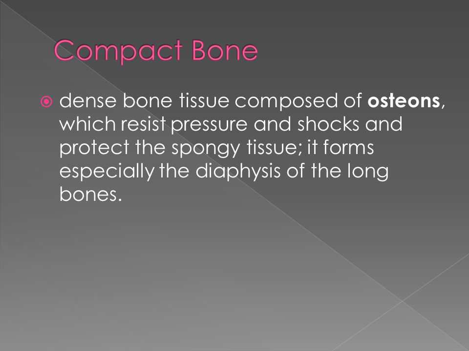  Elementary cylindrical structure of the compact bone made up of four to 20 concentric bone plates that surround the Haversian canal.
