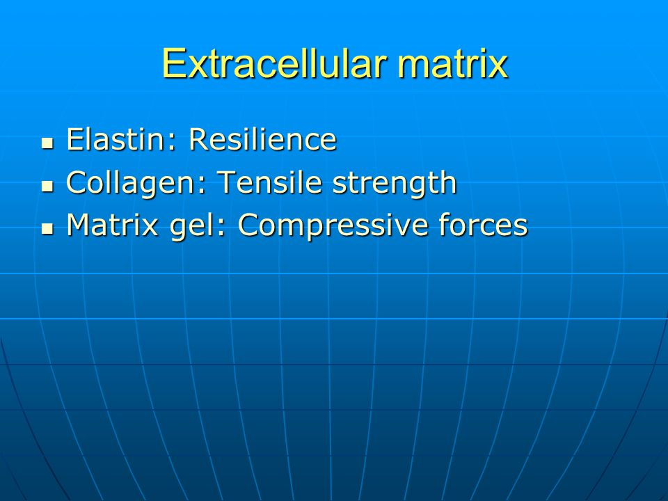 Extracellular matrix Elastin: Resilience Elastin: Resilience Collagen: Tensile strength Collagen: Tensile strength Matrix gel: Compressive forces Matrix gel: Compressive forces