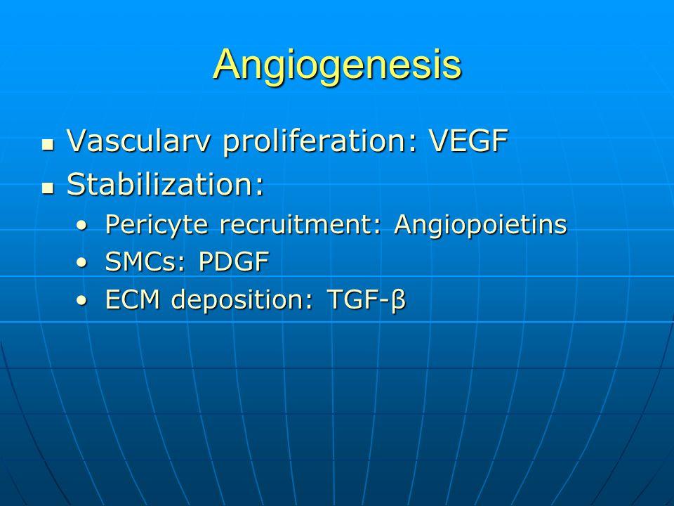 Angiogenesis Vascularv proliferation: VEGF Vascularv proliferation: VEGF Stabilization: Stabilization: Pericyte recruitment: Angiopoietins Pericyte recruitment: Angiopoietins SMCs: PDGF SMCs: PDGF ECM deposition: TGF-β ECM deposition: TGF-β