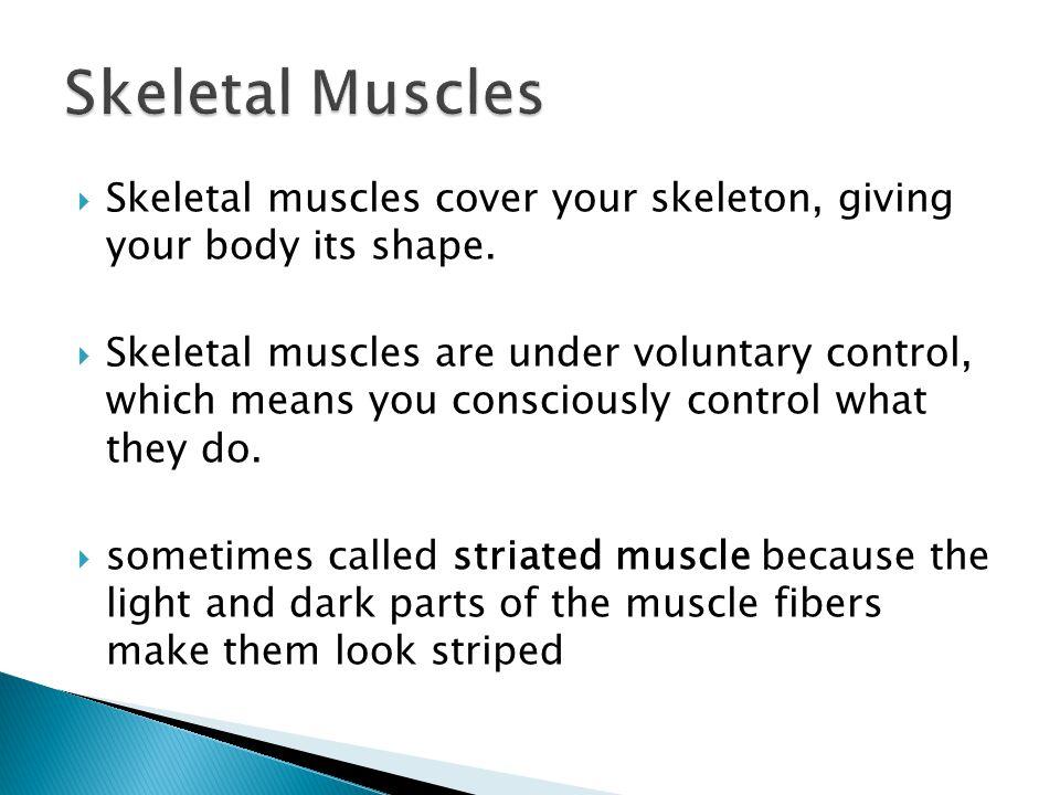  3.Muscular Dystrophy  a.