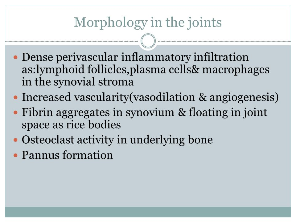 Morphology in the joints Dense perivascular inflammatory infiltration as:lymphoid follicles,plasma cells& macrophages in the synovial stroma Increased