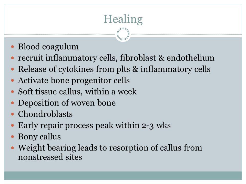 Healing Blood coagulum recruit inflammatory cells, fibroblast & endothelium Release of cytokines from plts & inflammatory cells Activate bone progenit