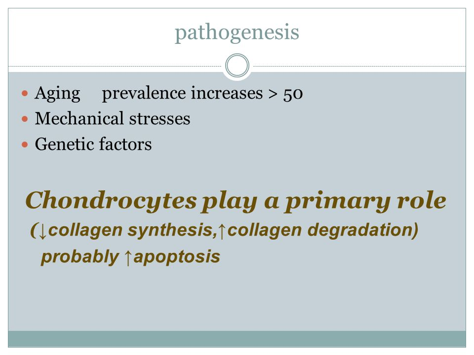 pathogenesis Aging prevalence increases > 50 Mechanical stresses Genetic factors Chondrocytes play a primary role ( ↓collagen synthesis,↑collagen degr