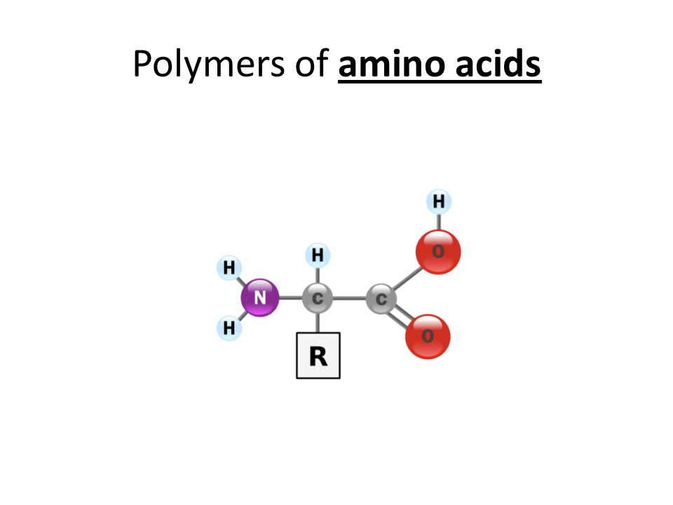 Polymers of amino acids