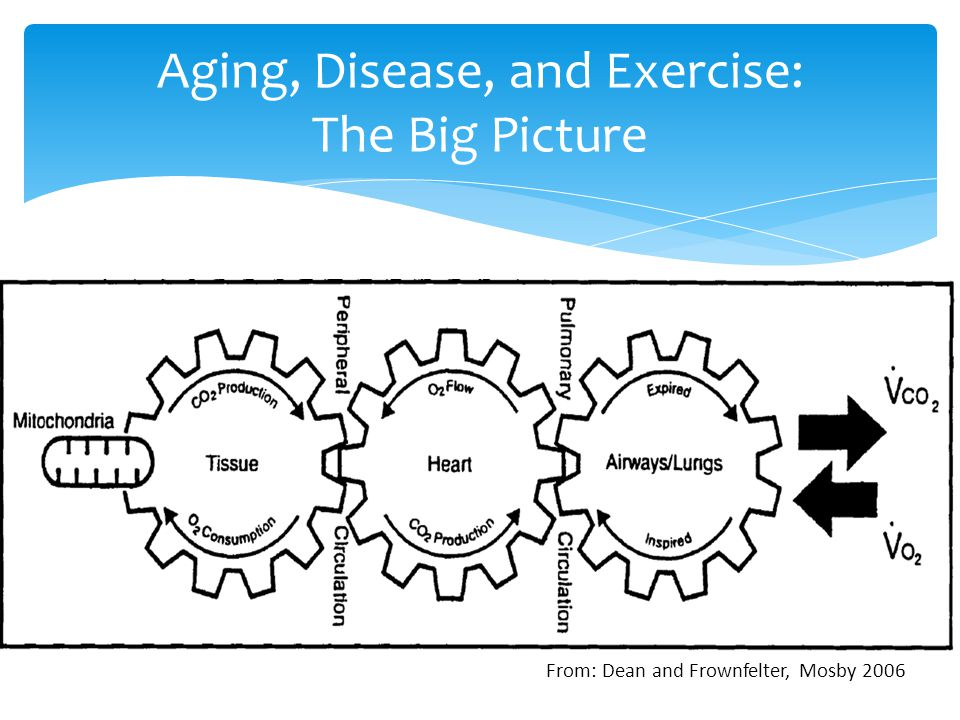 Aging, Disease, and Exercise: The Big Picture From: Dean and Frownfelter, Mosby 2006