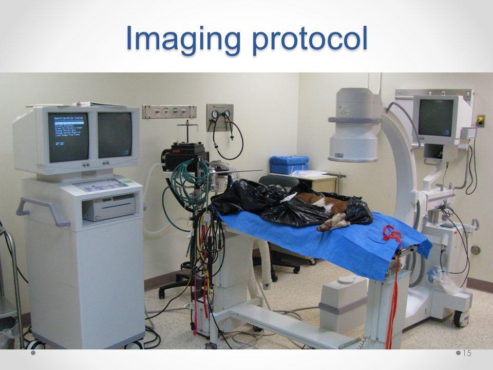 Imaging protocol 15