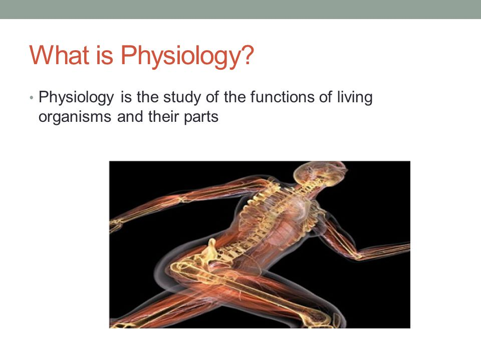 What is Physiology? Physiology is the study of the functions of living organisms and their parts