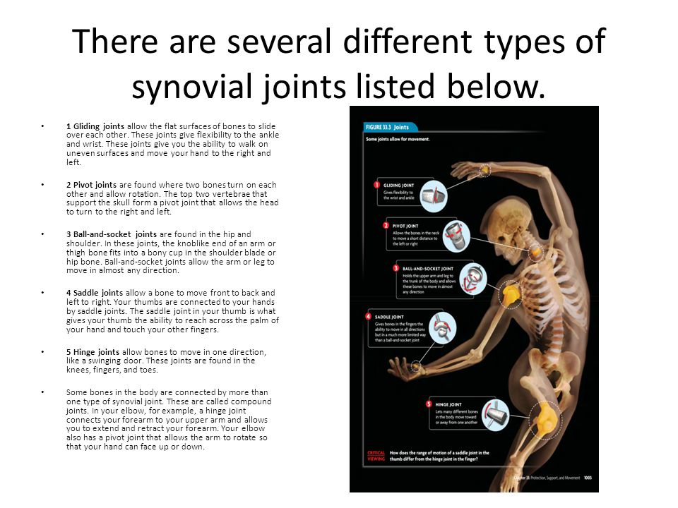 There are several different types of synovial joints listed below. 1 Gliding joints allow the flat surfaces of bones to slide over each other. These j