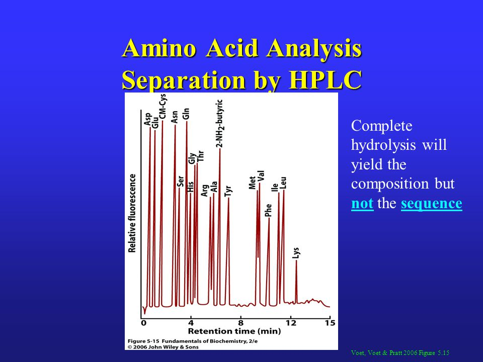 Amino Acid Analysis Separation by HPLC Voet, Voet & Pratt 2006 Figure 5.15 Complete hydrolysis will yield the composition but not the sequence