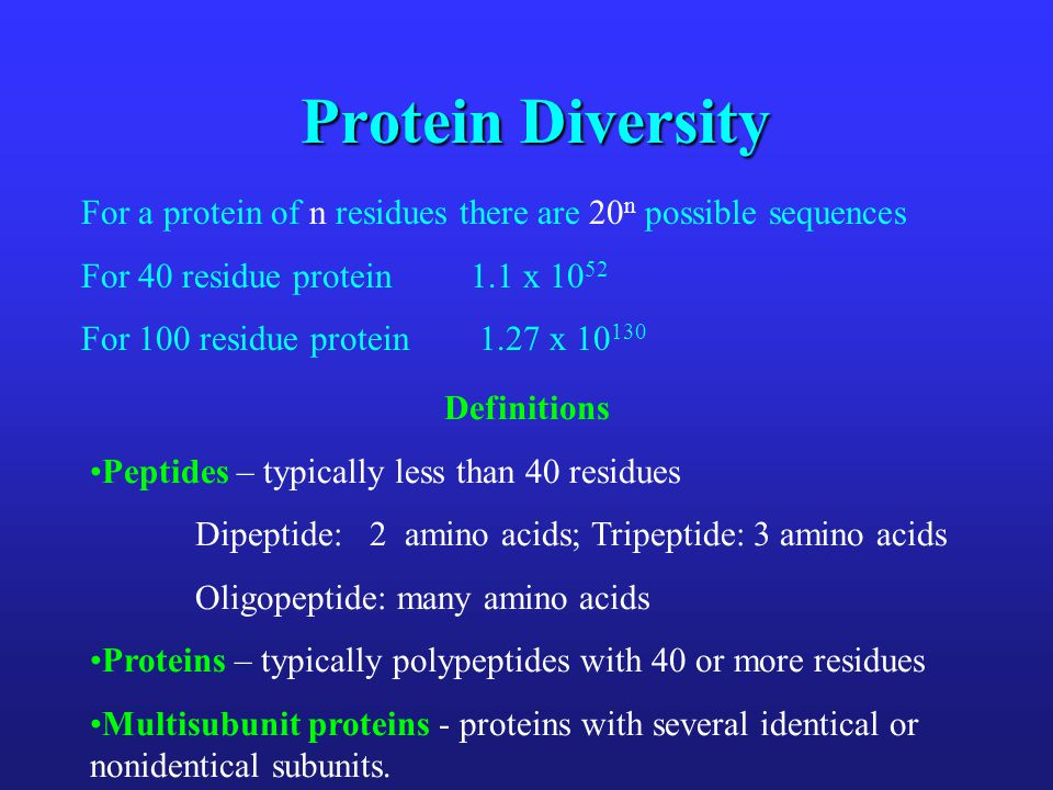 Protein Diversity For a protein of n residues there are 20 n possible sequences For 40 residue protein 1.1 x 10 52 For 100 residue protein 1.27 x 10 1