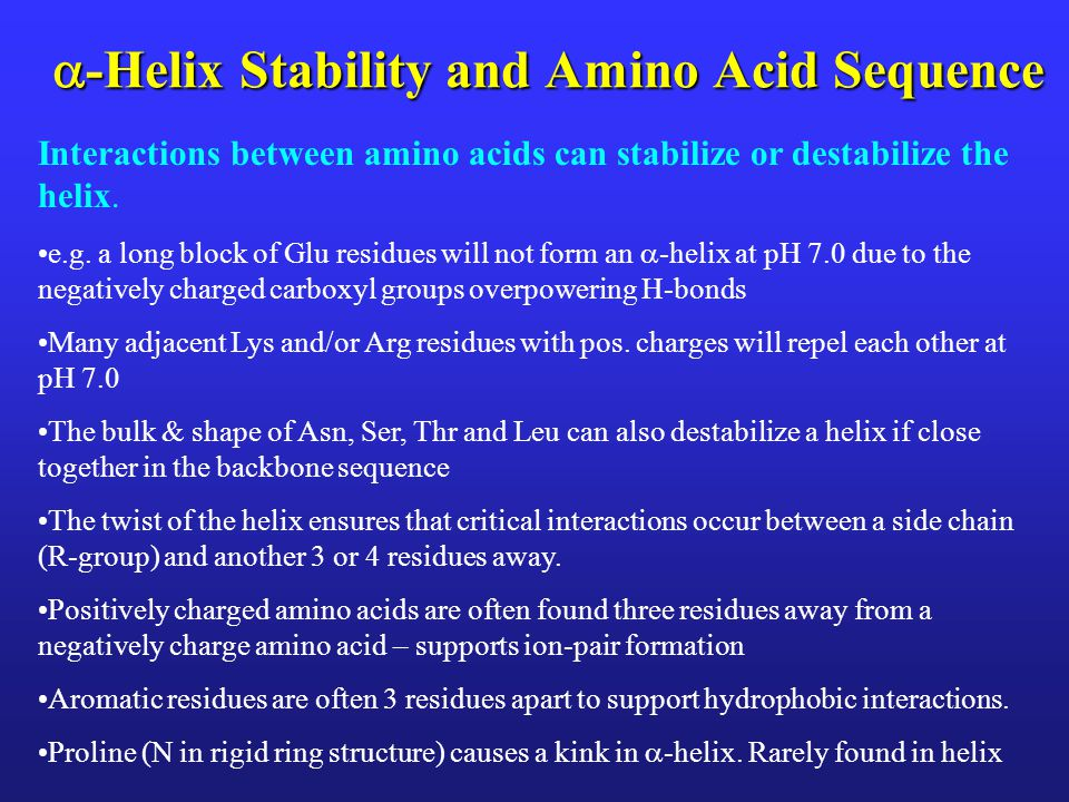  -Helix Stability and Amino Acid Sequence Interactions between amino acids can stabilize or destabilize the helix. e.g. a long block of Glu residues