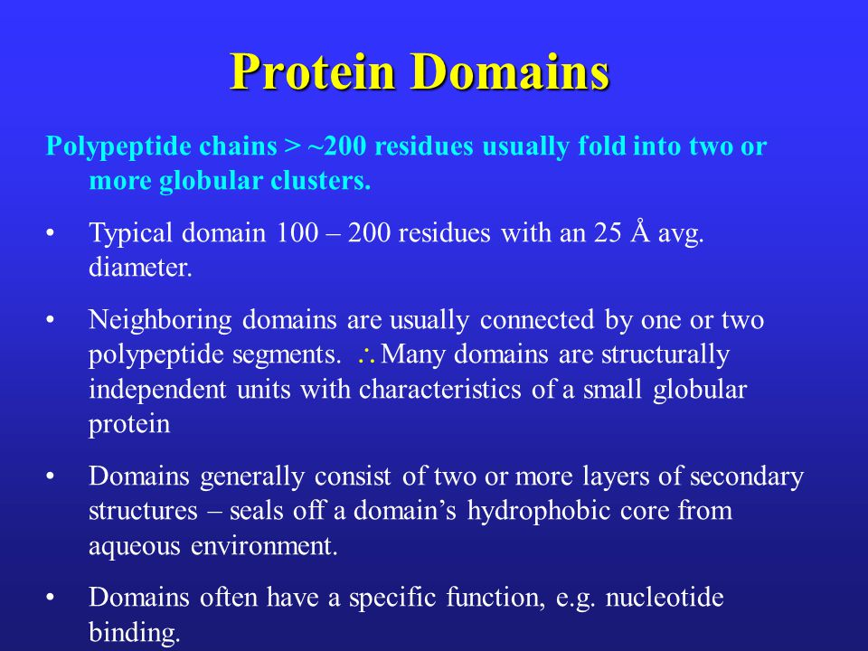 Protein Domains Polypeptide chains > ~200 residues usually fold into two or more globular clusters. Typical domain 100 – 200 residues with an 25 Å avg