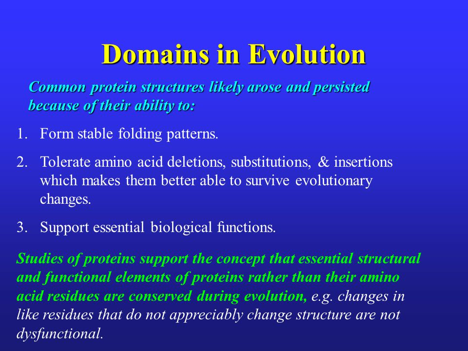 Domains in Evolution 1.Form stable folding patterns. 2.Tolerate amino acid deletions, substitutions, & insertions which makes them better able to surv