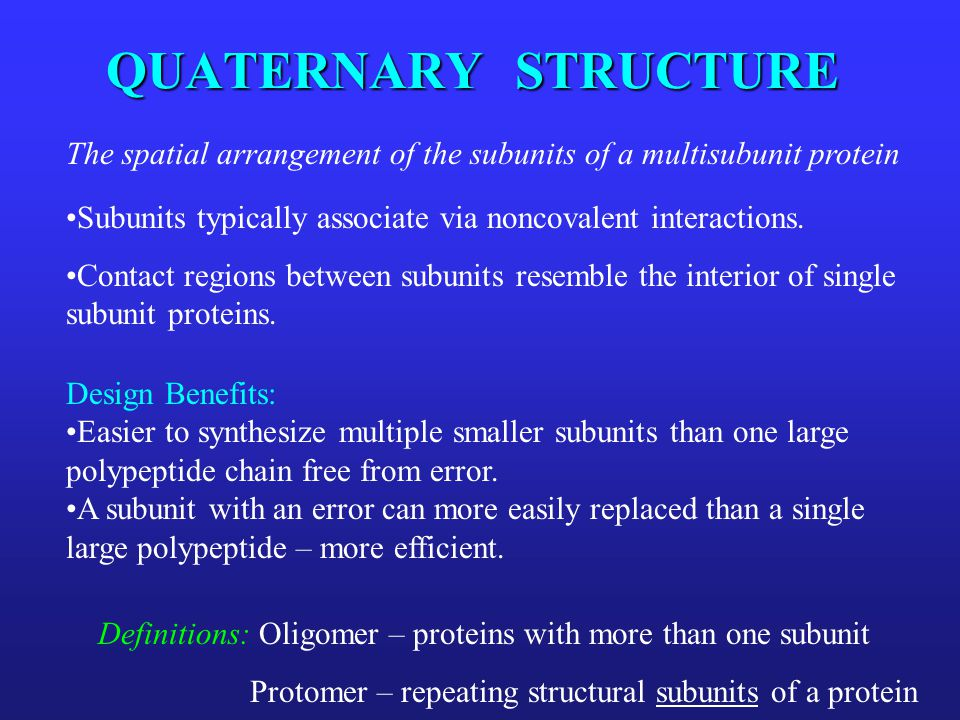QUATERNARY STRUCTURE The spatial arrangement of the subunits of a multisubunit protein Subunits typically associate via noncovalent interactions. Cont
