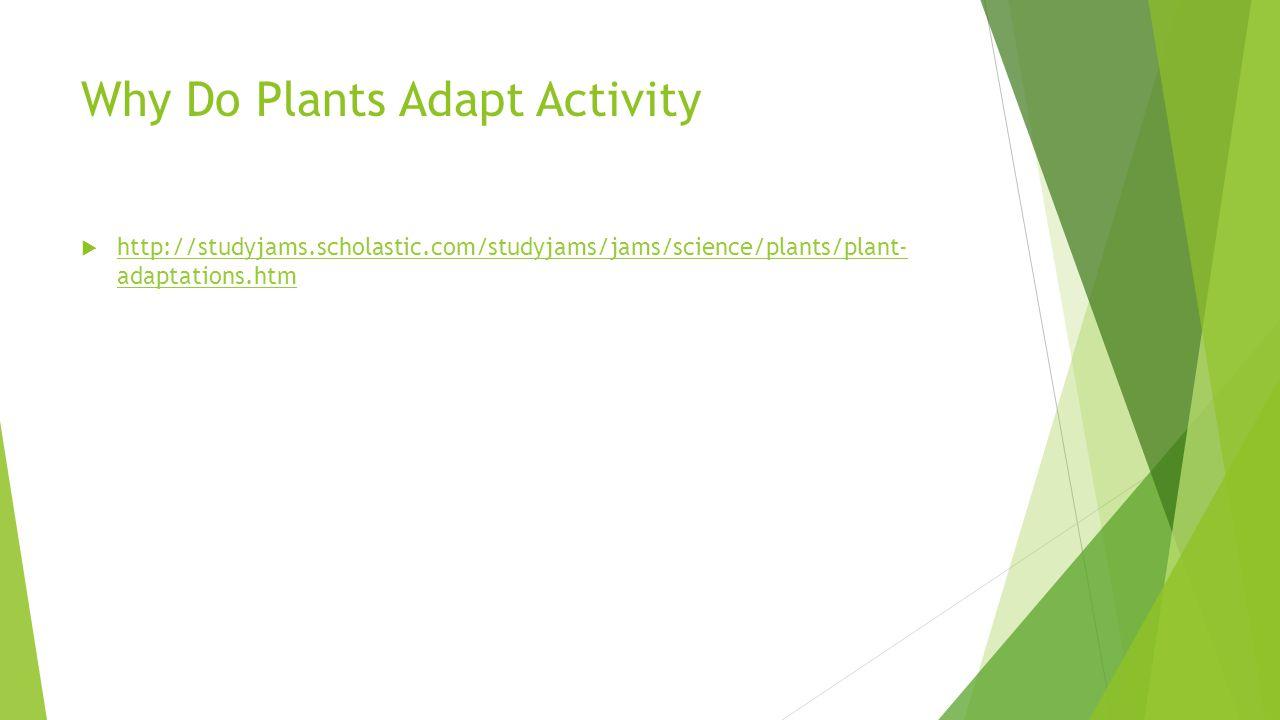 Why Do Plants Adapt Activity  http://studyjams.scholastic.com/studyjams/jams/science/plants/plant- adaptations.htm http://studyjams.scholastic.com/st