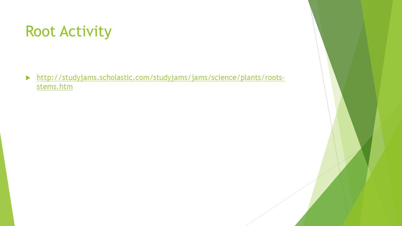 Root Activity  http://studyjams.scholastic.com/studyjams/jams/science/plants/roots- stems.htm http://studyjams.scholastic.com/studyjams/jams/science/