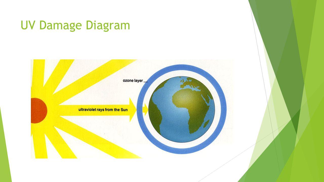 UV Damage Diagram