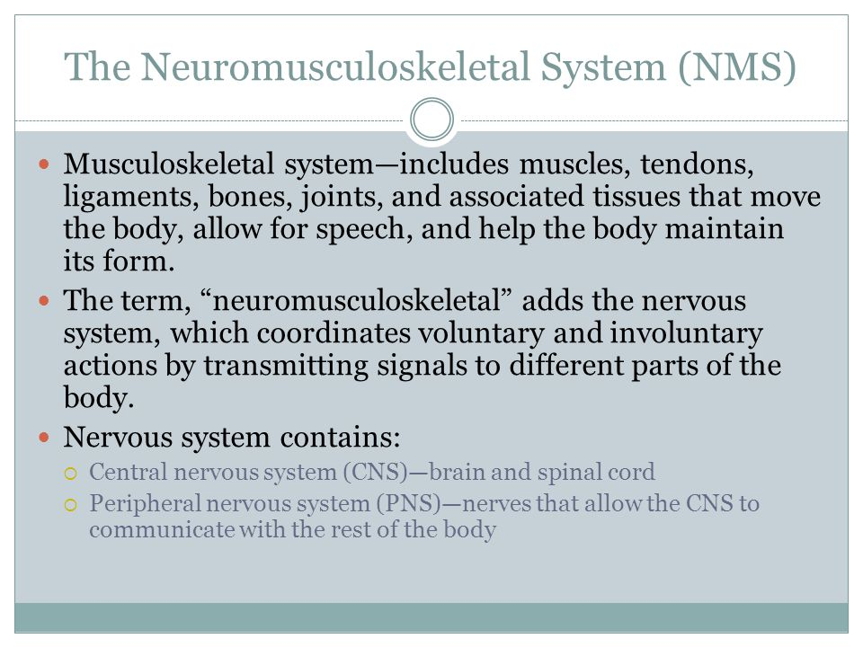 The Neuromusculoskeletal System (NMS) Musculoskeletal system—includes muscles, tendons, ligaments, bones, joints, and associated tissues that move the body, allow for speech, and help the body maintain its form.