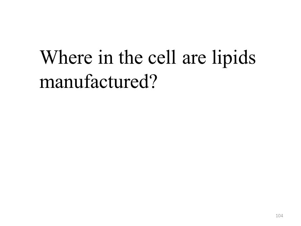 104 Where in the cell are lipids manufactured?
