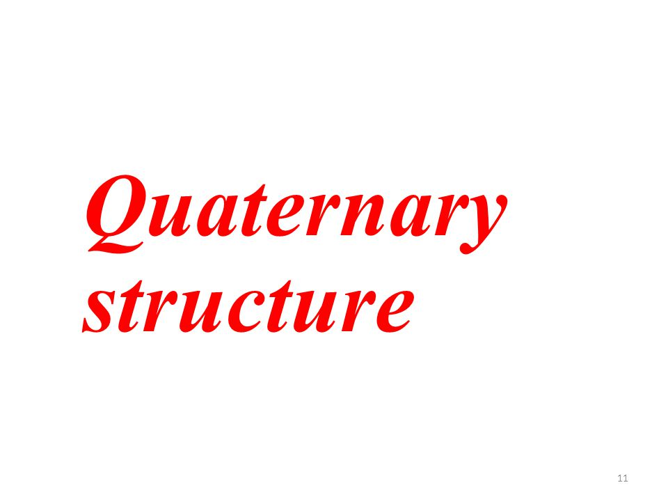 11 Quaternary structure