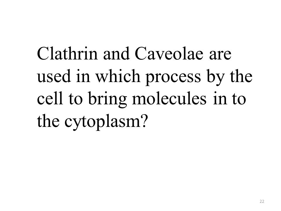 22 Clathrin and Caveolae are used in which process by the cell to bring molecules in to the cytoplasm?