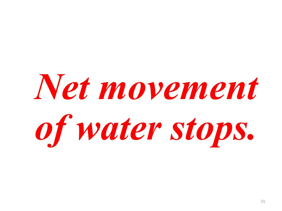 31 Net movement of water stops.