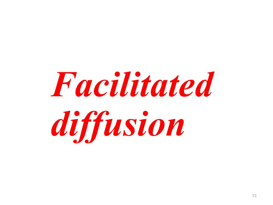 51 Facilitated diffusion