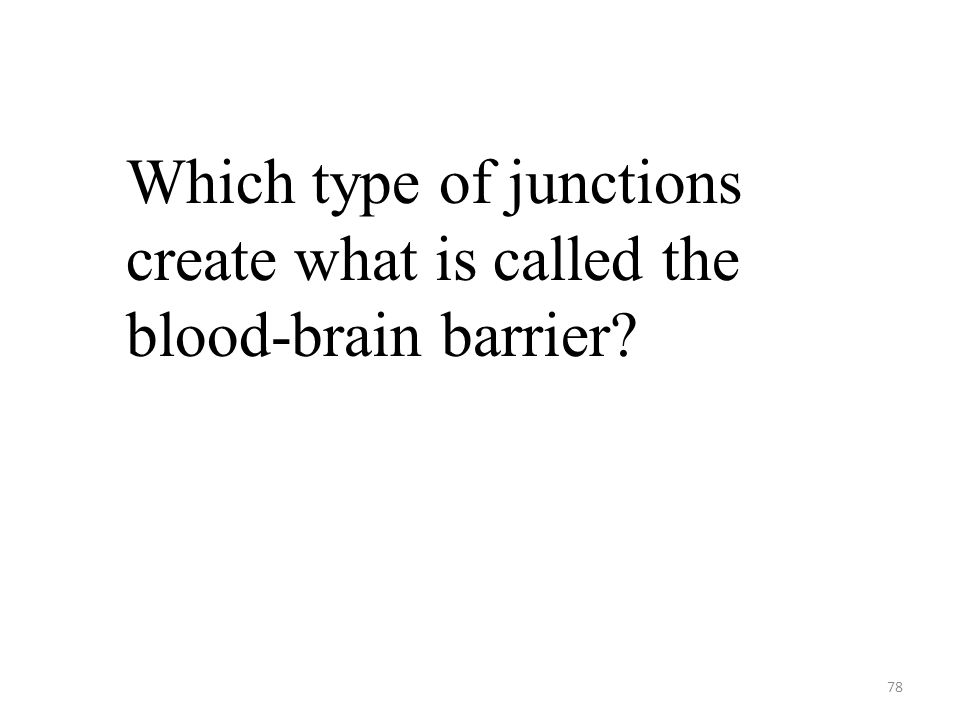 78 Which type of junctions create what is called the blood-brain barrier?
