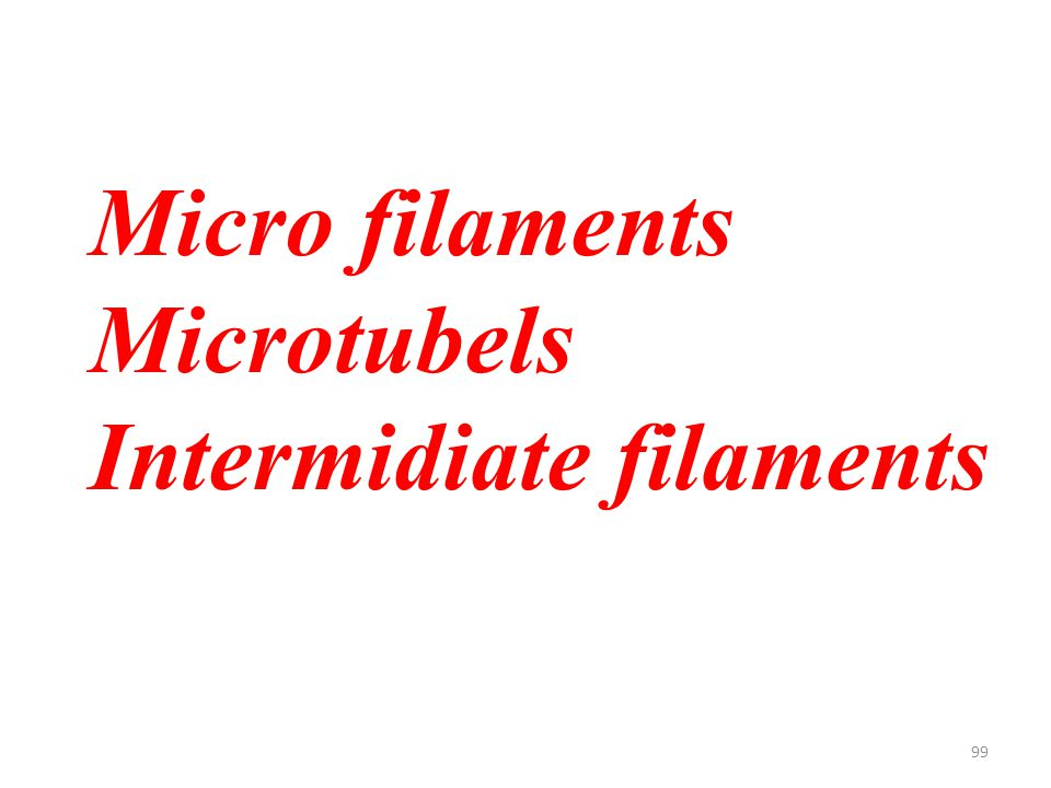 99 Micro filaments Microtubels Intermidiate filaments