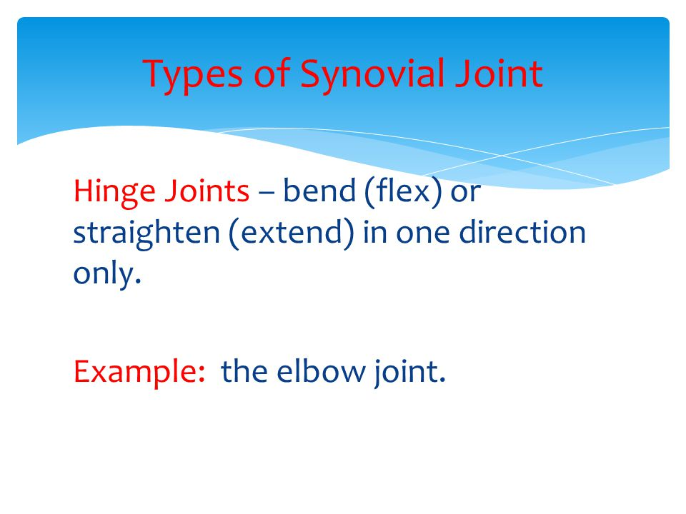 Hinge Joints – bend (flex) or straighten (extend) in one direction only. Example: the elbow joint. Types of Synovial Joint