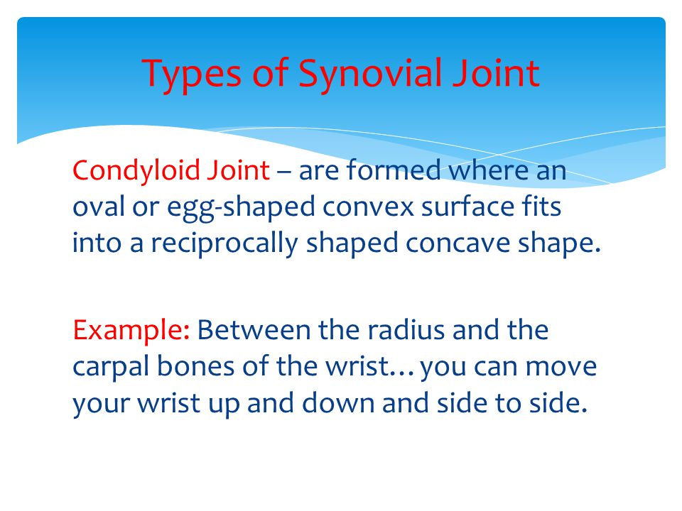 Condyloid Joint – are formed where an oval or egg-shaped convex surface fits into a reciprocally shaped concave shape. Example: Between the radius and