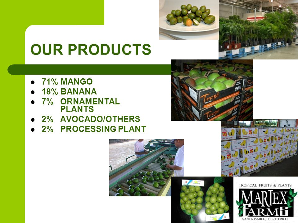 Product: EXOTIC FRUITS Over 100 acres of land dedicated to growing exotic tropical fruits in Puerto Rico.