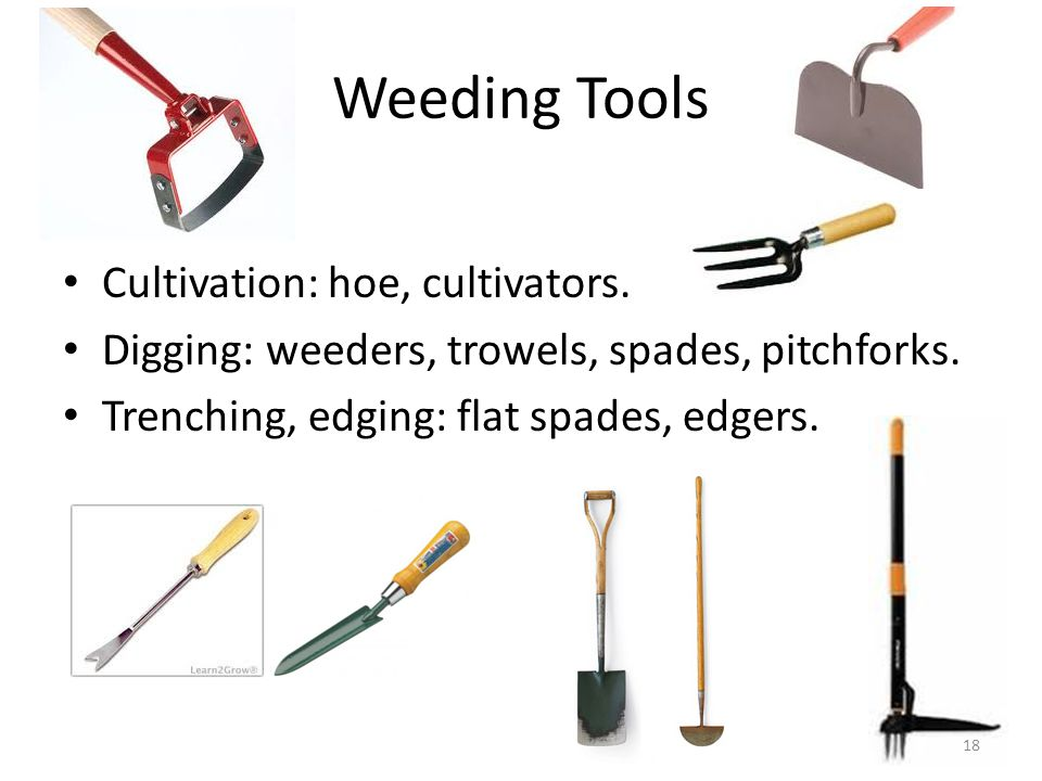Weeding Tools Cultivation: hoe, cultivators. Digging: weeders, trowels, spades, pitchforks. Trenching, edging: flat spades, edgers. 18