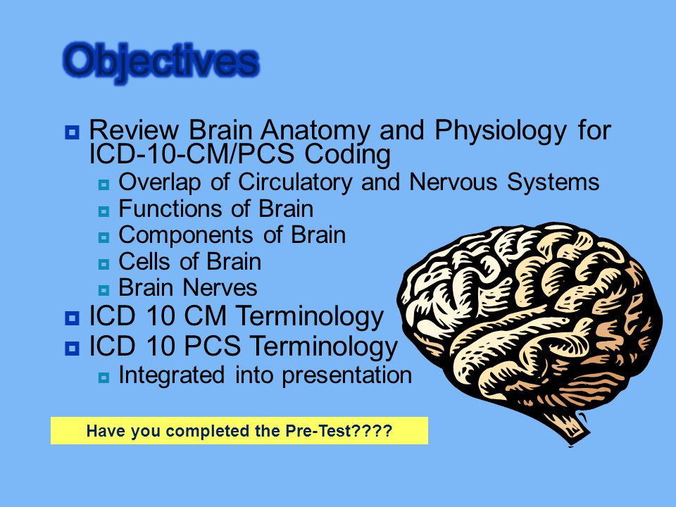  Review Brain Anatomy and Physiology for ICD-10-CM/PCS Coding  Overlap of Circulatory and Nervous Systems  Functions of Brain  Components of Brain
