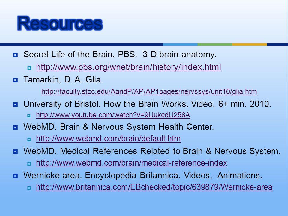  Secret Life of the Brain. PBS. 3-D brain anatomy.  http://www.pbs.org/wnet/brain/history/index.html http://www.pbs.org/wnet/brain/history/index.htm