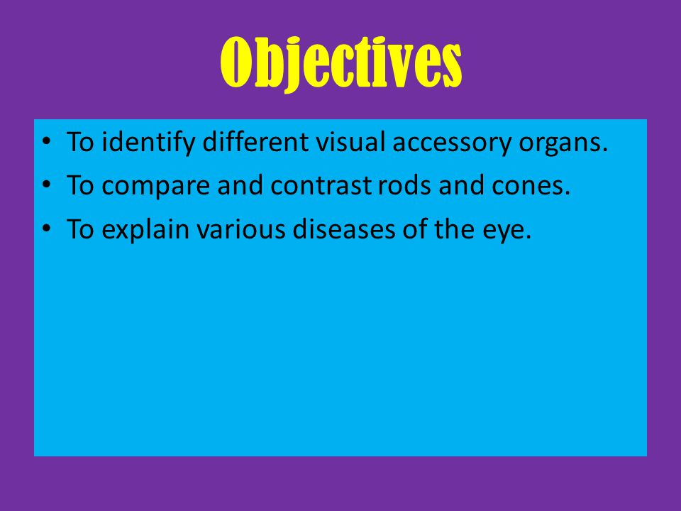 Accessory Organs of the Eye Eyelids: contain skin, muscle, connective tissue, and conjunctiva.