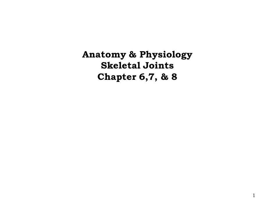 1 Anatomy & Physiology Skeletal Joints Chapter 6,7, & 8