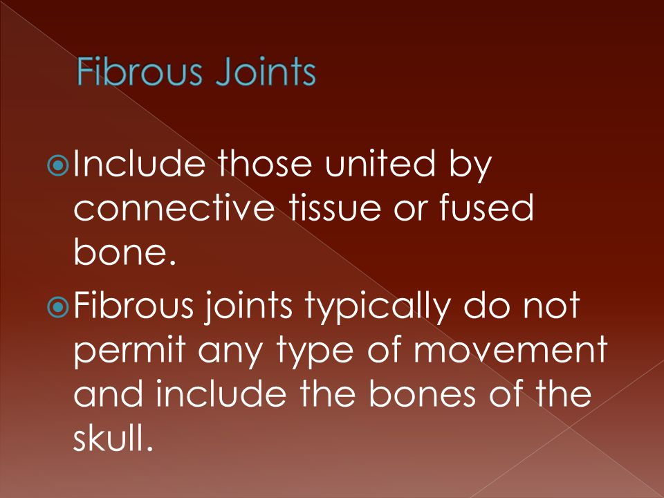  Include those united by connective tissue or fused bone.  Fibrous joints typically do not permit any type of movement and include the bones of the