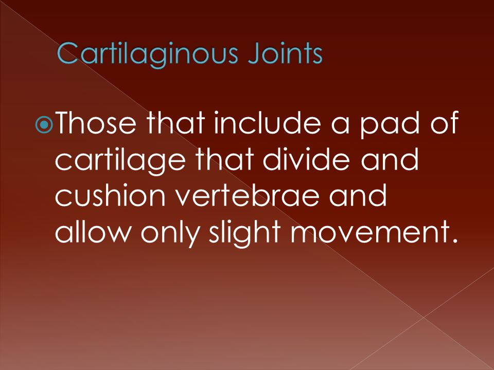  Those that include a pad of cartilage that divide and cushion vertebrae and allow only slight movement.