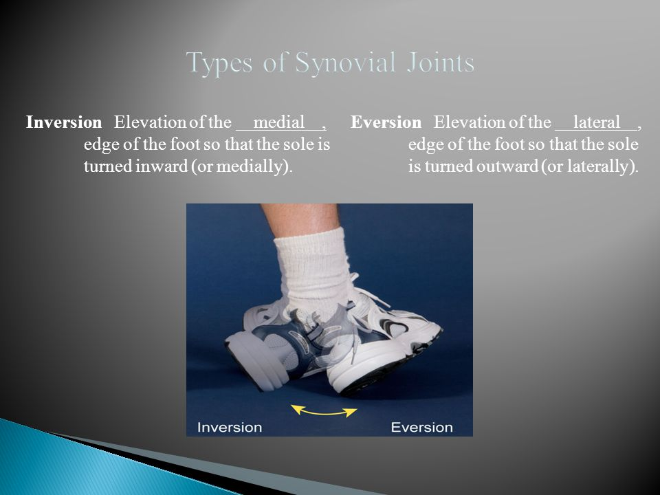 Inversion Elevation of the medial, edge of the foot so that the sole is turned inward (or medially). Eversion Elevation of the lateral, edge of the fo