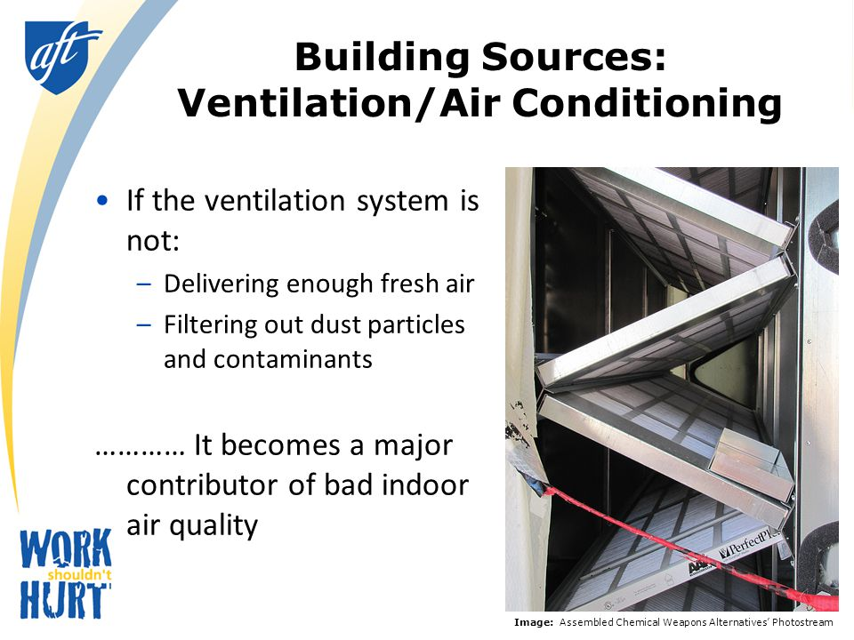 Building sources: that mold you're smelling……..